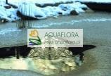 AquaOxy 2000 - napowietrzacz do stawu wodnego