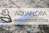 Kamień napowietrzający A008 - walec średni 18x50 mm -
