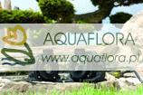 Aquamax  8000 Dry - pompa wodna
