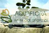Aquamax  14000 Dry - pompa wodna