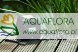 AquaOxy 4800 - napowietrzacz do stawu wodnego