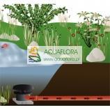 FIAP Bottom drain 50 mm -