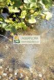 AquaOxy 500 - napowietrzacz do stawu wodnego